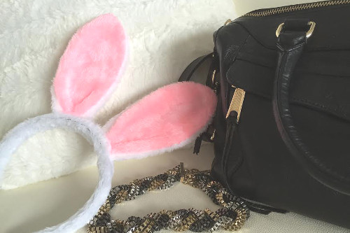 Bunny-accessories